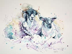 Highland Ewe and Lamb by Amanda Gordon -  sized 28x21 inches. Available from Whitewall Galleries